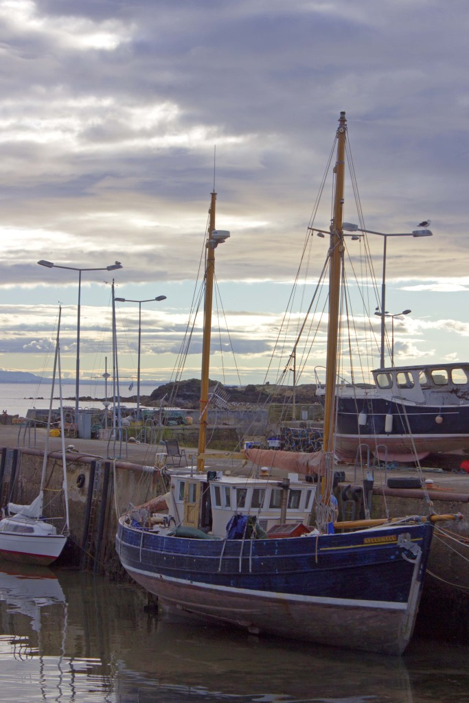 Fife (Scotland)
